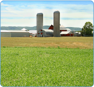 Farm Insurance, Commercial Insurance in Cannon Falls, MN